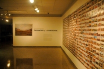 Experiencing the AOK Gallery