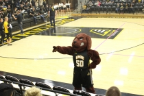 At UMBC, the dog is in charge