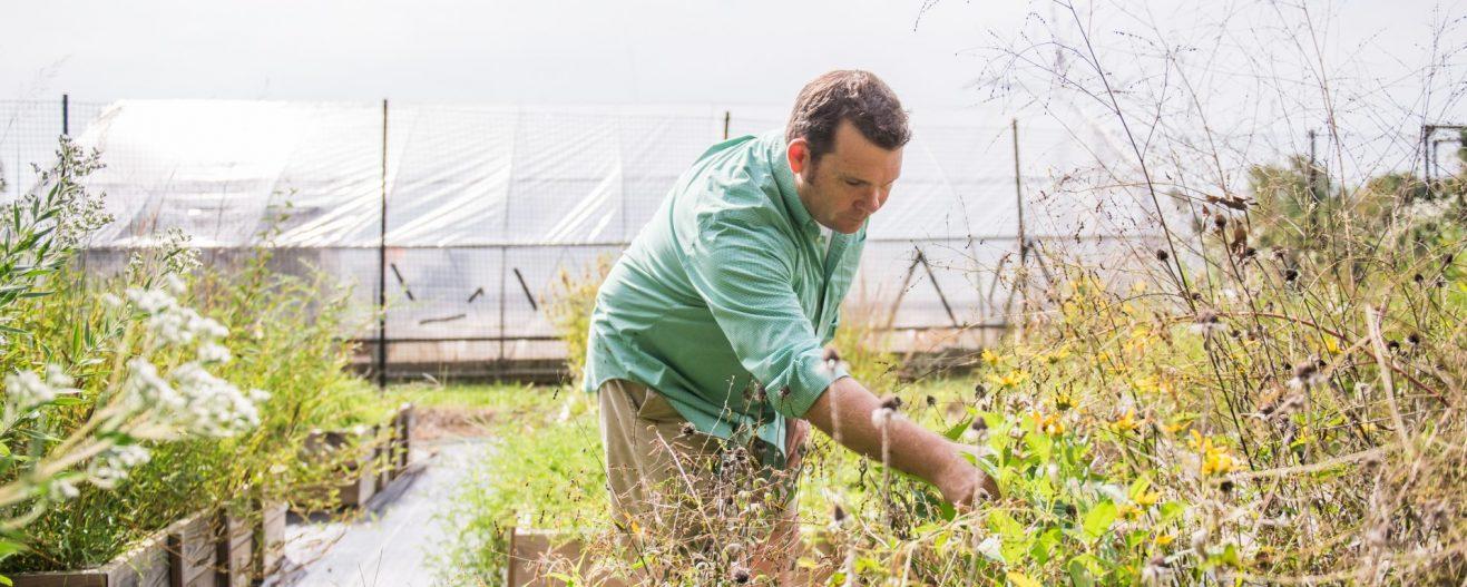 Baltimore Ecosystem Study turns 20