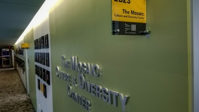 Cultural diversity at UMBC thrives within student orgs