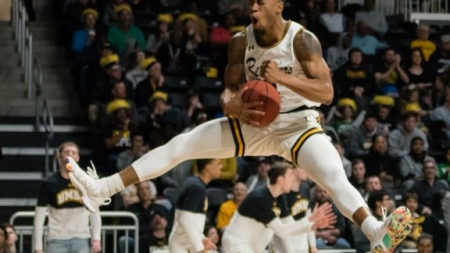 Dog eat dog world: Retrievers knock out the Great Danes