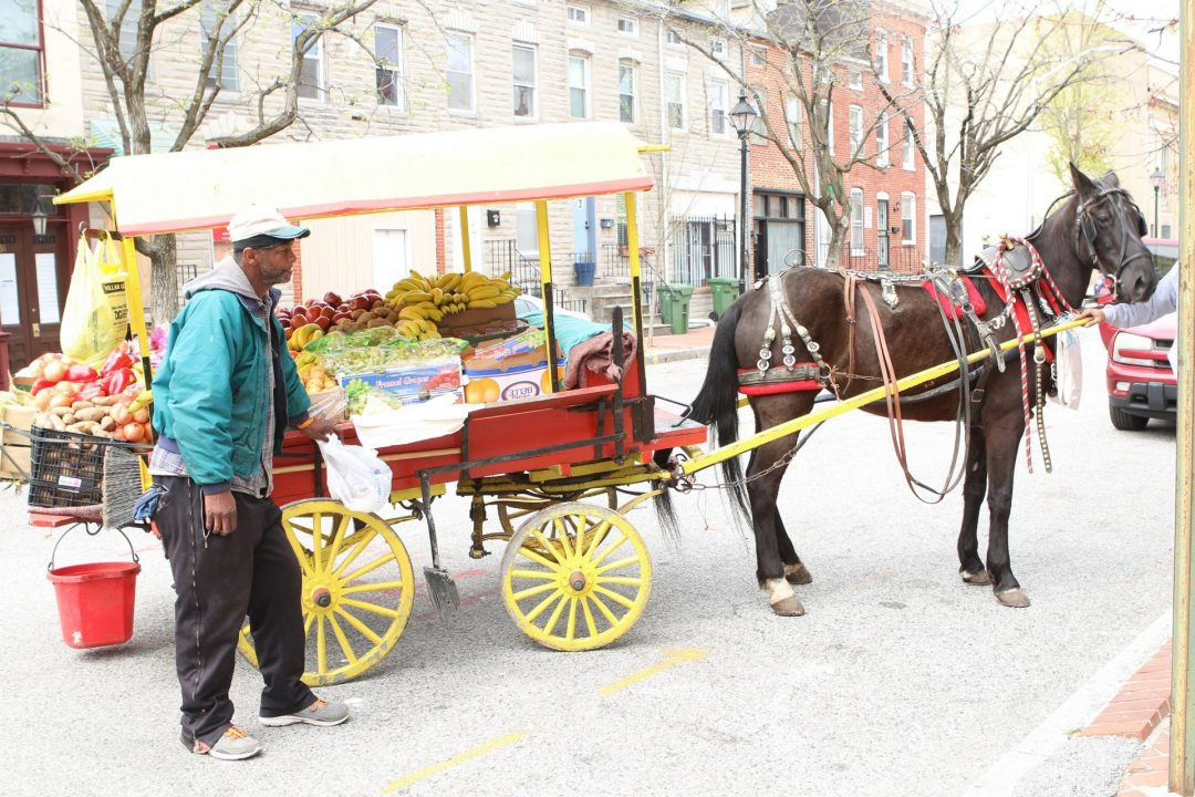 The Arabbers of Baltimore City: A market on wheels