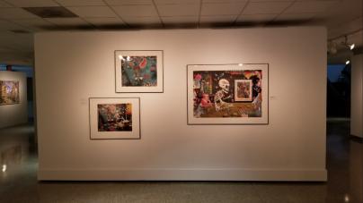 "The ""mood swings"" within Robert W. Fichter's art"