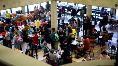 Should Einstein Bros. Bagels open in the library?