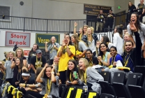 Spirit shines at the Retriever rally